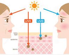 solar-efeitos-do-sol-na-pele-fotorcreated-proteror-. A sigla UV ... 8649515de4
